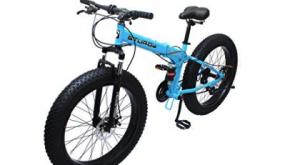Sturdy fat bike